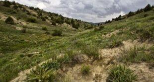 هشدار نماینده ساوجبلاغ در مورد برخی واگذاریهای زمین در بخش منابع طبیعی البرز