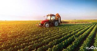 زنگ خطر تعطیلی کشاورزی البرز