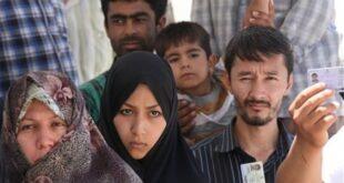 ۵ هزار تبعه خارجی غیرمجاز البرز تحویل اردوگاه ورامین شدند/ دستگیری عاقبت ورود مخفیانه به استان