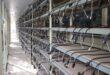 کشف 606 دستگاه ماینر قاچاق از یک مزرعه غیر قانونی