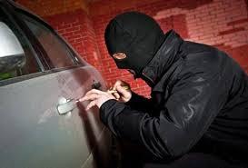 افزایش ۴۹ درصدی کشفیات سرقت در ساوجبلاغ